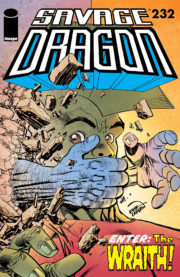 Cover of Savage Dragon #232