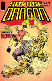 Cover Savage Dragon Vol.2 #243