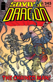 Cover Savage Dragon Vol.2 #245