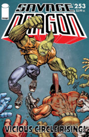 Cover Savage Dragon Vol.2 #253